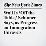 Wall Is 'Off the Table,' Schumer Says, as Progress on Immigration Unravels | Sheryl Gay StolbergandMaggie Haberman