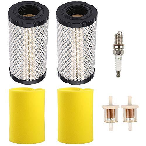 Wellsking 793569 793685 Air Filter for Briggs & Stratton Intek Series 20-21 Gross HP John Deere GY21055 MIU11511 LA125 LA115 D100 D120 D110 L100 Rotary 12673 Lawn Mower Tractor (Briggs And Stratton Intek 20 Hp Air Filter)