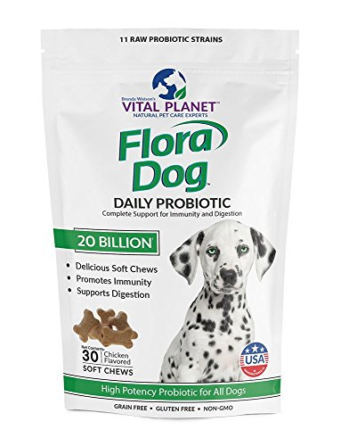 - Vital Planet - Flora Dog Soft Chews - Natural Probiotic Support for Immunity and Digestion - 30 Chews