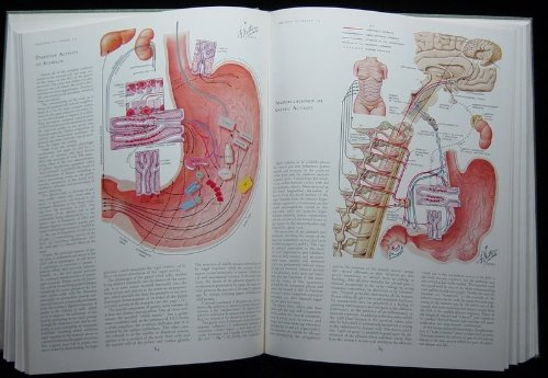 Netter Collection of Medical Illustrations Digestive System: Upper Digestive Tract - http://medicalbooks.filipinodoctors.org