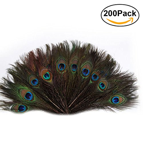 Tail Feather Costume (OULII 200pcs 25-30cm Beautiful Natural Peacock Tail Feathers Eyes Feathers Decorations for Craft / Art / Dress / Hats / Bridal Costume / Party)