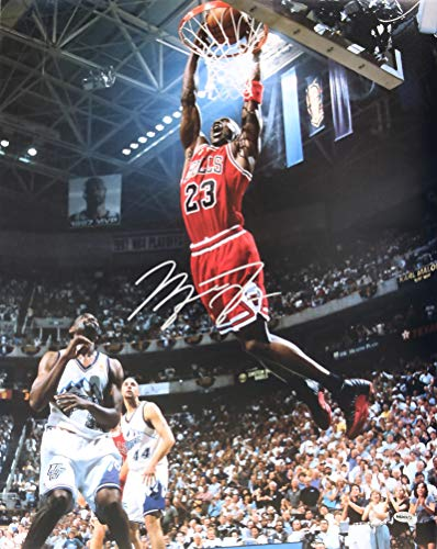 Michael Jordan Chicago Bulls Signed Signed Autographed 16