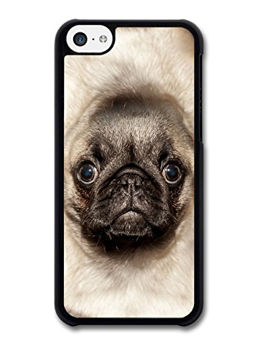 Funny Cute Cool Pug Photography Big Body Meme case for iPhone 5C