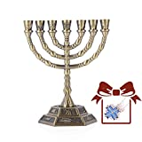 12 Tribes of Israel Menorah, Jerusalem Temple 7 Branch Jewish Candle Holder (8 inches, Coppery)
