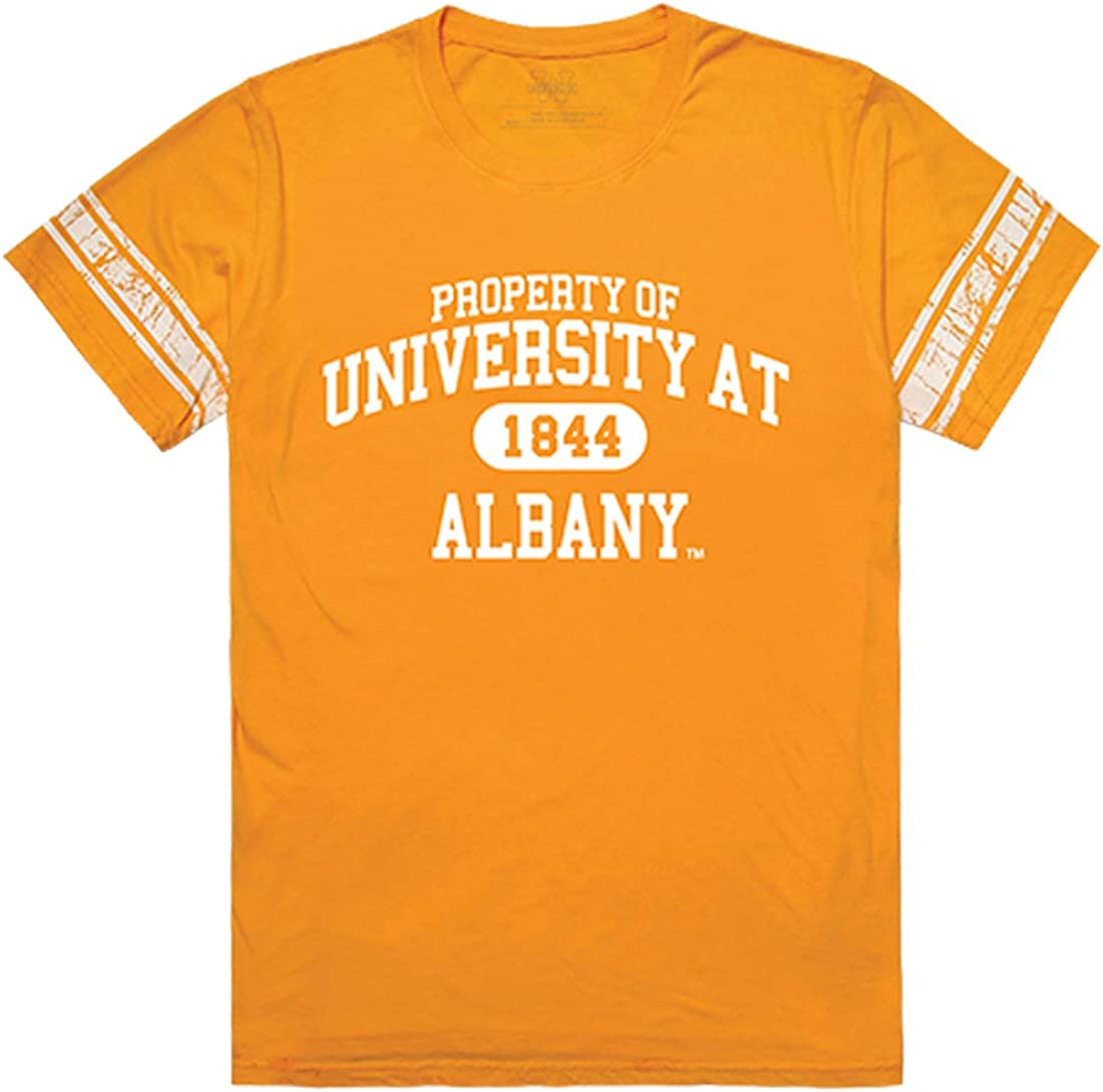 NCAA Albany Great Danes T-Shirt V3