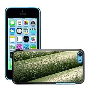 Super Stellar Slim PC Hard Case Cover Skin Armor Shell Protection // M00051272 drops bamboo aero macro // Apple iPhone 5C
