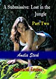 In part one, Kate was captured by a group of bushwhackers, while Jasmine managed to escape. They were enjoying a break in their journey north, at a river-falls near Maroua, in the North Region of Cameroon. Kate was taken to a prison camp, deep in the...