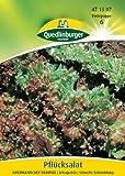 Pflücksalat, Amerikanischer brauner - 50 g