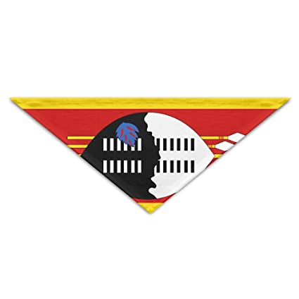 Amazon.com: GMSCPET Swaziland Flag Triangle Pet Scarf Dog ...
