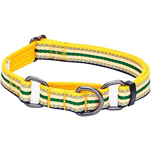(Blueberry Pet 8 Colors 3M Reflective Multi-Colored Stripe Safety Training Martingale Dog Collar, Yellow and Green, Large, Heavy Duty Adjustable Collars for Dogs )