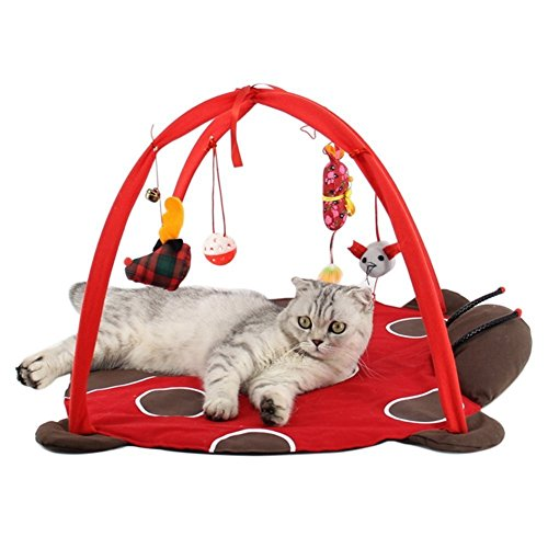 Totoo Cat Activity Center with Hanging Toy Balls, Mice & More - Helps Cats Get Exercise & Stay Active ()