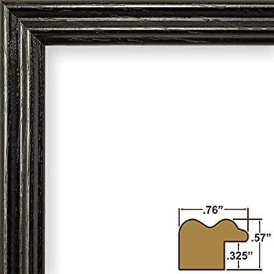 Craig Frames 200ASHBK 0.75-Inch Wide Picture/Poster Frames with Wood Grain Finish