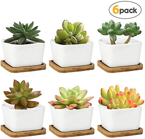 Succulent Planters,OAMCEG 3.35 inch Square Design for Succulent Cactus,Set of 6 White Ceramic Succulent Cactus Planter Pots with Bamboo Tray Plants NOT Included
