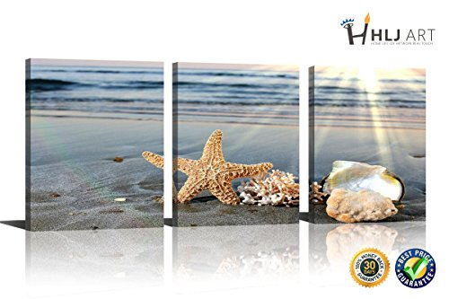 (HLJ Art 3 panel Seashell Starfish with Blue Sea Wave Paintings The HD Photograph Prints On Canvas Seascape Pictures For Home Decor Decoration 36x16in)