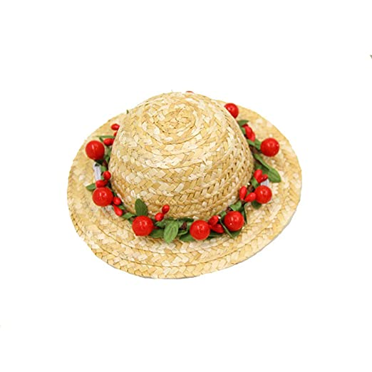 Perro Sombrero Sombrero Mini Sombrero de paja Sombreros ...