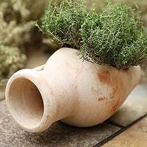 Ánfora bepflanzen Jardinera Carcasa Deco Terracota cerámica L 23cm B 10cm