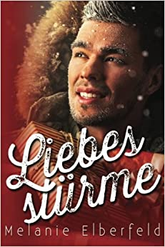 Book Liebesstürme: Holiday Gay Romance