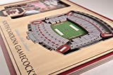 NCAA South Carolina Gamecocks 3D StadiumViews
