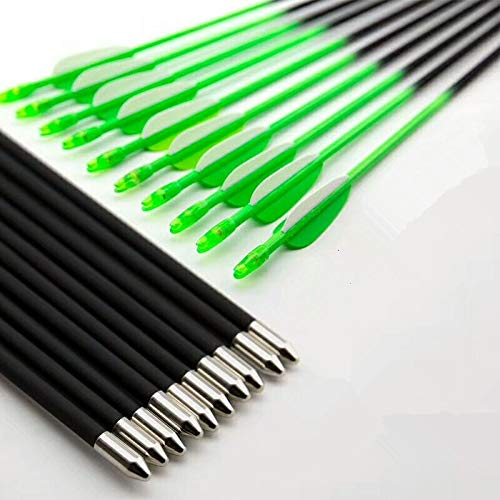 GPP 28 Inch Bright Color Fiberglass Archery Target Arrows - Practice Arrows or Youth Arrows for Recurve Bow,Green