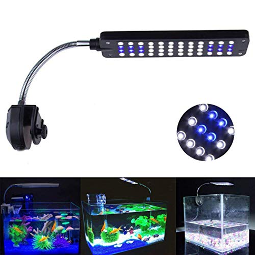 ECtENX Led Aquarium Light, Small Clip-on Grow Light with 48 LEDs, White and Blue Bulbs for Day and Night View, Adjustable Angles, Energy-Saving Light, Fish Tank Lights for Freshwater and Saltwater