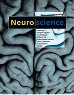 Cognitive neuroscience psy 381 physiological psychology cognitive neuroscience 3rd edition fandeluxe Choice Image