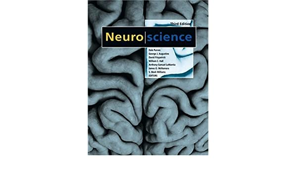 Cognitive neuroscience 3rd edition marie t banich rebecca j cognitive neuroscience 3rd edition marie t banich rebecca j compton 9780840032652 amazon books fandeluxe Images