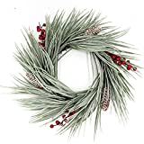 Marsh View Coastal Flocked Sea Grass Winter White Christmas Wreath Red Berries Frosted Pine Cones Fits Between Storm Door Use Indoor Outdoors Unlit Large Candle Ring 20-21 Inch Diameter 3 in Deep