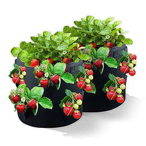 Strawberry Grow Bags 2Pack10Gallons Strawberry Planter with 8 Side Grow Pockets,Breathable Non-woven Fabric Reinforce Handle Growing Bag for Strawberries,Plant Pots herb garden planter outdoor