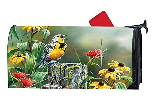 Meadowlark Singing Flowers Bird Mailbox Covers Magnetic, Seasonal Home Houses Decorations Mailbox Wraps, 6.5 x19 Inch Standard Size,Multicolor