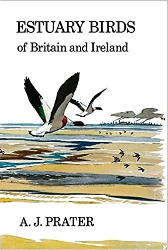 Man and Wildfowl (Poyser Monographs)