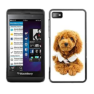 Paccase / SLIM PC / Aliminium Casa Carcasa Funda Case Cover - Cute Puppy Dog Poodle - Blackberry Z10