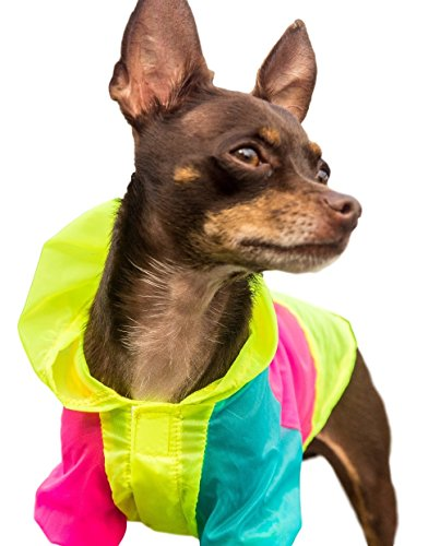 Neon Dog Jacket - Teacup, XXS, XS and Small Dog Clothes - Chihuahua and Yorkie Clothes (Mane Bling)
