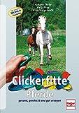 Clickerfitte Pferde: Gesund, geschickt und gut erzogen