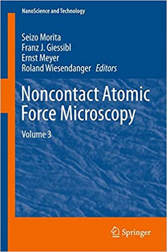 Noncontact Atomic Force Microscopy: Volume 3 (NanoScience and Technology)