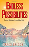 Endless Possibilities: Sunny skies and mountains high: Volume 3 (The Journey)