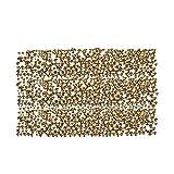 Zealer 1800pcs Clear Crystal Nail Art Rhinestones