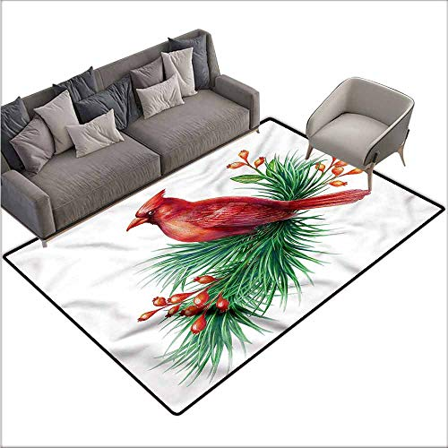 - Outdoor Floor Mats Cardinal,South American Bird Branch 60
