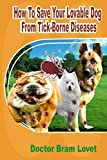 How To Save Your Lovable Dog From Tick-Borne Diseases