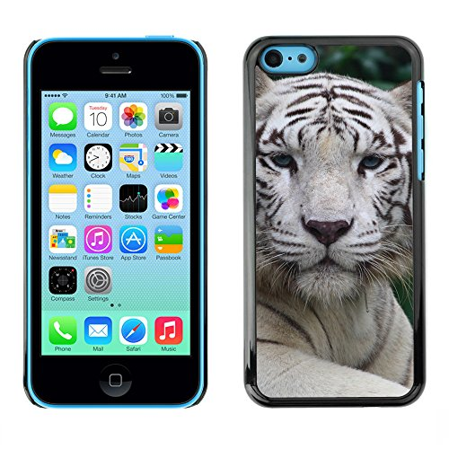 Premio Sottile Slim Cassa Custodia Case Cover Shell // V00002206 tigre blanc // Apple iPhone 5C
