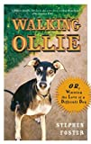 Walking Ollie, Stephen Foster, 0399534296