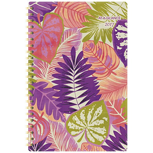 """AT-A-GLANCE Weekly / Monthly Planner / Appointment Book 2017, 4-3/4 x 8"""", Multicolor (164-200)"""