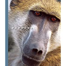 Baboons (The World of Mammals)