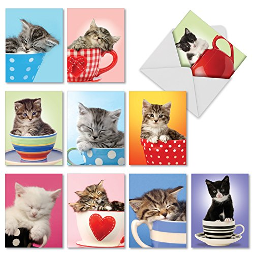 M2969 Cup-Cats: 10 Assorted Thank You Note Cards Are Filled to the Brim With Adorable Kitten Cuteness, w/White Envelopes.