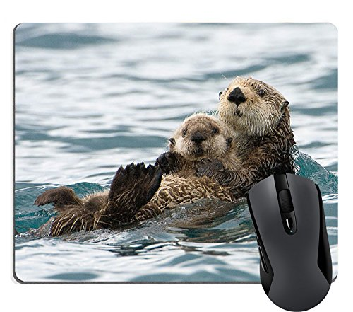 Wknoon Sea Otters Mouse Pad Nature Animal Playing Water Funny Mouse Pads