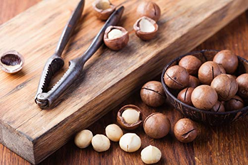 Food to Live Organic Macadamia Nuts (Raw) (2 Pounds) by Food to Live (Image #8)