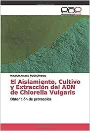 El Aislamiento, Cultivo y Extracción del ADN de Chlorella Vulgaris: Obtención de protocolos