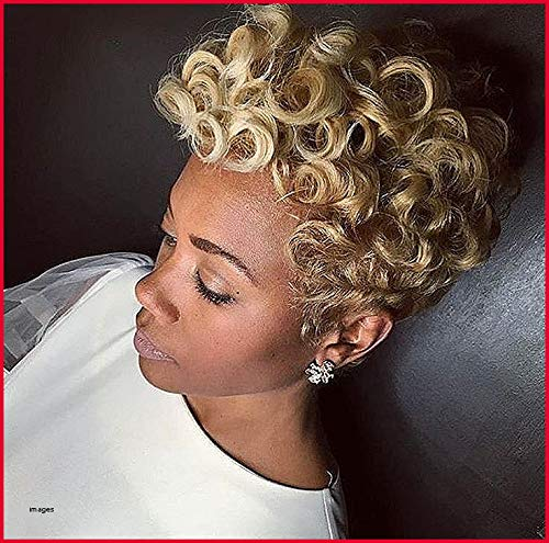 Amazon Com Naseily Short Blonde Afro Curly Wigs For Black Women Natural Synthetic Wigs For Women Short Blonde Hairstyles For African American Women Beauty