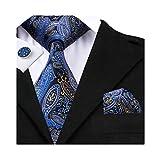 Hi-Tie Mens Silk Paisley Tie, Woven Silk Necktie Handkerchief Cufflinks set