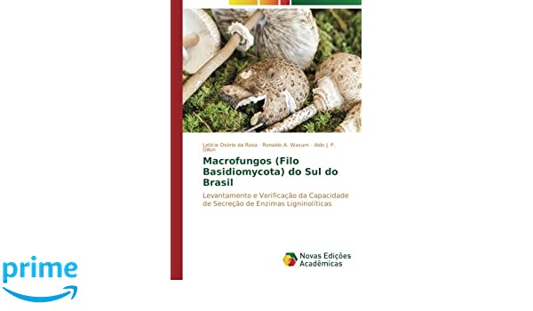 Macrofungos (Filo Basidiomycota) do Sul do Brasil ...