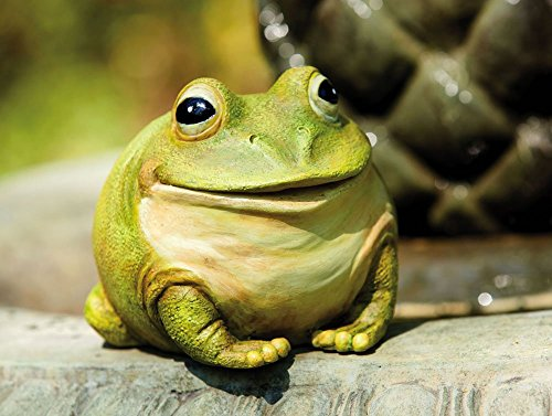 """Evergreen Garden Medium Portly Frog Painted Polystone Outdoor Statue and Key Holder - 6""""W x 5""""D x 6""""H by Evergreen Garden (Image #1)"""